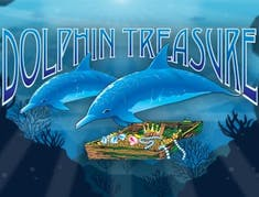 Dolphin Treasure logo
