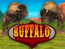 Buffalo Bingo logo